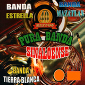 Pura Banda Sinaloense by Various Artists