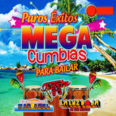 Puros Exitos Mega Cumbias Para Bailar by Various Artists