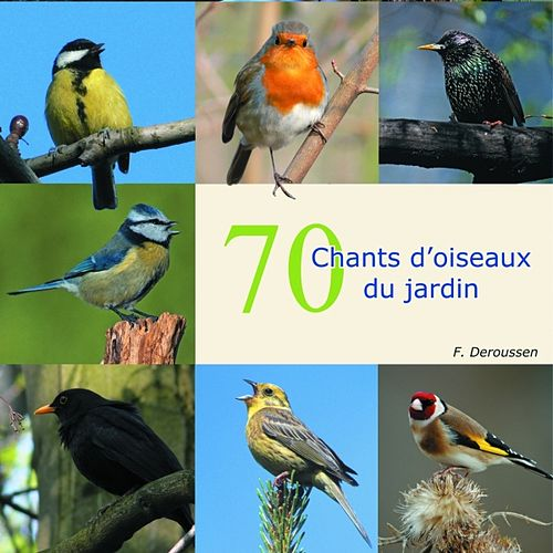 Play & Download 70 Chants D'oiseaux Du Jardin by Deroussen Fernand | Napster