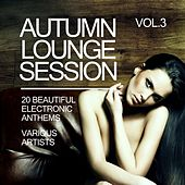 Autumn Lounge Session (20 Beautiful Electronic Anthems), Vol. 3 by Various Artists