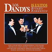 Play & Download Brindis Romántico by Los Dandys | Napster