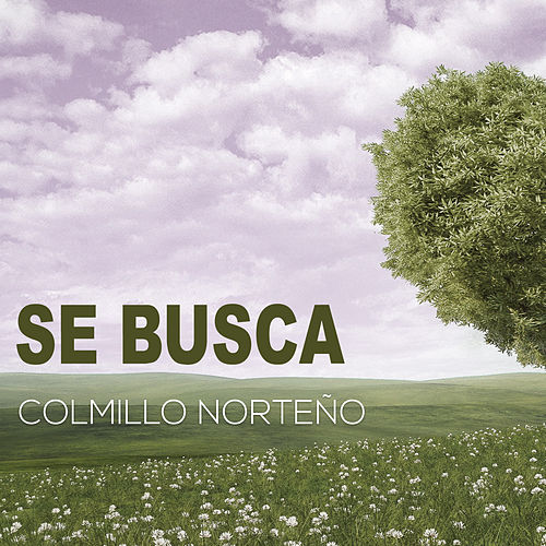 Play & Download Se Busca (Version Pop) by Colmillo Norteno | Napster