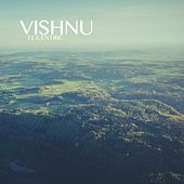 Eccentric by Vishnu Ojha