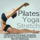 Play & Download Pilates, Yoga & Stretch - Fettförbränning Träning Musik, Avkopplande Låtar för Efter Träning & Meditation Musik för Hälsa Och Välbefinnande by Ibiza Fitness Music Workout | Napster