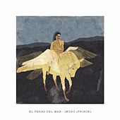 Play & Download Iwd4u by El Perro Del Mar | Napster