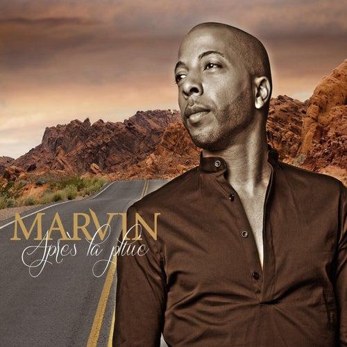 Après la pluie by Marvin