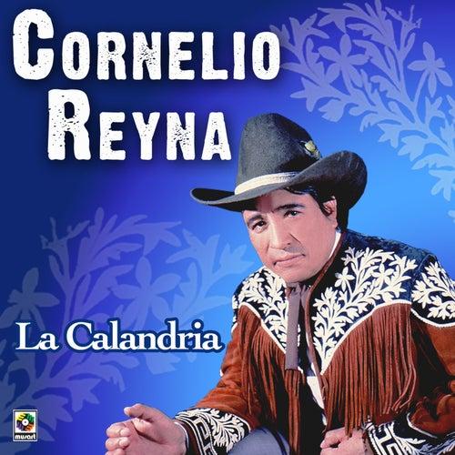Play & Download La Calandria by Cornelio Reyna | Napster