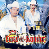 Play & Download Y Arriba La Plebada..! by Voces Del Rancho | Napster