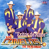 Play & Download Exitos De Amor by Los Canelos De Durango | Napster