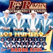 Play & Download Los Numeros 1 by Los Razos   Napster
