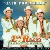 Play & Download Gato Por Liebre by Los Razos   Napster