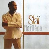 Florilège by Slaï