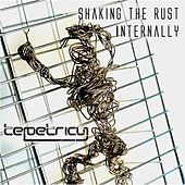 Play & Download Shaking The Rust Internally by Tepetricy | Napster