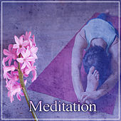Meditation – Nature Sounds, Chakra Meditation, Yoga, Deep Sleep, Pure Relaxing Therapy, Inner Silence by Meditation Awareness