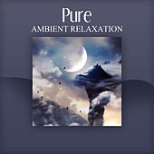 Play & Download Pure Ambient Relaxation – Relaxing Sleep, Nature Sounds, Dreaming, Sleep Music by Deep Sleep Relaxation | Napster