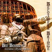 Play & Download Belvidere Bridge (feat. J. Plunky Branch) by Bee Boisseau | Napster