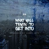 What Yall Tryin To Get Into (feat. YT Triz) by Ad
