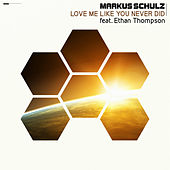 Love Me Like You Never Did by Markus Schulz