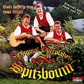 Play & Download Geh laßt's ma mei Musi by D'original Oberpfälzer Spitzboum | Napster