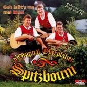 Geh laßt's ma mei Musi by D'original Oberpfälzer Spitzboum