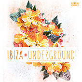 Play & Download Ibiza Underground by Various Artists | Napster