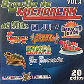 Orgullo De Michoacan 20 Exitos, Vol. 4 by Various Artists