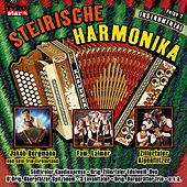 Play & Download Steirische Harmonika - Folge 2 - Instrumental by Various Artists | Napster