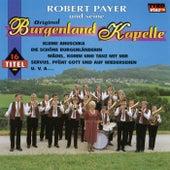 Play & Download In der Weinschenke by Robert Payer | Napster