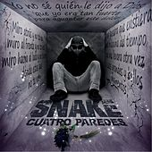 Play & Download Cuatro Paredes by Snake | Napster