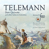 Telemann: Don Quixote and Other Suites & Concertos by Various Artists