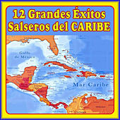 12 Éxitos Salseros del Caribe by Various Artists