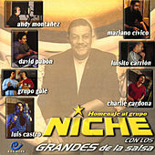 Play & Download Homenaje al Grupo Niche Con los Grandes de la Salsa by Various Artists | Napster
