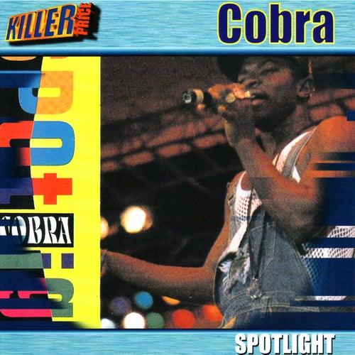 Spotlight by Cobra