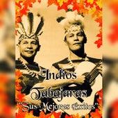 Indios Tabajaras - Sus Mejores Éxitos by Los Indios Tabajaras