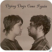 Play & Download Dying Dogs Come Again by Ashley | Napster