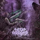Play & Download The Elysian Grandeval Galèriarch by Infant Annihilator | Napster