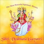 Play & Download Shri Vedmata Gayatri by Anuradha Paudwal | Napster