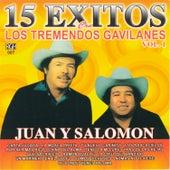 15 Exitos Con Los Tremendos Gavilanes, vol. 1 by Los Tremendos Gavilanes