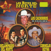 Play & Download Los Reyes Del Norte by Various Artists | Napster