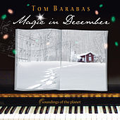 Play & Download Magic in December by Tom Barabas | Napster