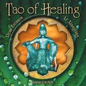 Play & Download Tao of Healing by Li Xiangting | Napster