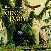 Play & Download Forest Rain by Dean Evenson | Napster