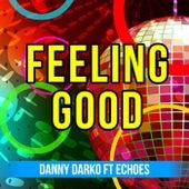 Feeling Good (feat. Echoes) by Danny Darko