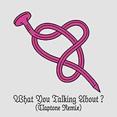What You Talking About? (Claptone Remix) by Peter Bjorn and John