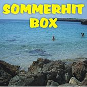 Sommerhit Box by Various Artists