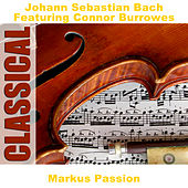 Play & Download Markus Passion by Various Artists | Napster