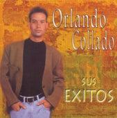 Play & Download Sus Exitos by Orlando Collado | Napster