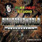Righteous World Riddim by Various Artists