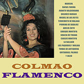 Play & Download Colmao Flamenco by Various Artists | Napster