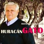 Play & Download Huracán Gato Remasterizado by Antonio González | Napster